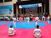 2018 국제 다문화태권도 한마당대회, 양평군에서 성황리에 개최